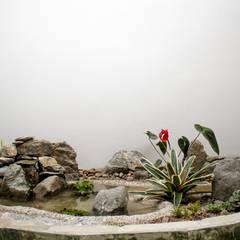Poseta  con cascada al interior: Estanques de jardín de estilo  por Juan Sebastián Jaramillo Lizarralde