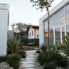 من Nico Papalia Architect حداثي زجاج
