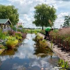Estanques de jardín de estilo  por De Tuinregisseurs, Rural