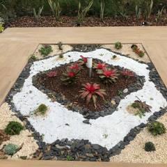 Rock Garden by Vivero la Palma,