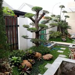 من Tukang Taman Surabaya - Tianggadha-art تبسيطي حجر