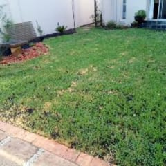 Front yard by Delight Gardening and Irrigation Service's, Classic Bricks