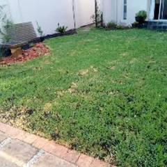 فناء أمامي تنفيذ Delight Gardening and Irrigation Service's,