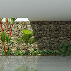بيت زجاجي تنفيذ Bendito Verde Paisagismo, إستوائي