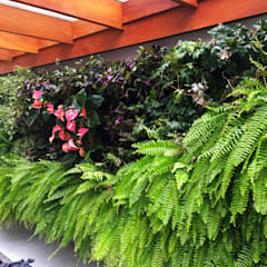 Garden by Bendito Verde Paisagismo, Tropical