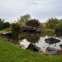 Garden Pond by Paisare - Paisajismo y arquitectura,