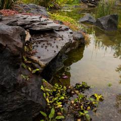 Estanques de jardín de estilo  por Paisare - Paisajismo y arquitectura, Rústico