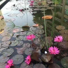 Garden Pond by LA COSTERA PAISAJISMO Y JARDINERIA,