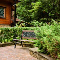 Jardines frontales de estilo  por Primula, Rural