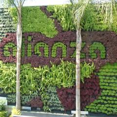 محلات تجارية تنفيذ Generación Verde