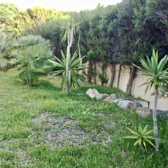 Requalificação de jardim: Jardins  por Greenchallenge,Moderno