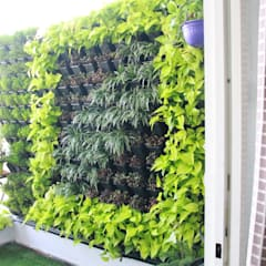 Balcony by Interioforest Plantscaping Solutions (OPC) Pvt. Ltd, Asian