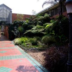 Jardines MOLDES MEDELLIN: Estanques de jardín de estilo  por Paisajismo trópico sas, Tropical