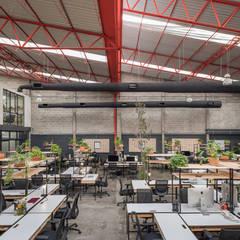 مكاتب ومحلات تنفيذ Monolito Construcciones,