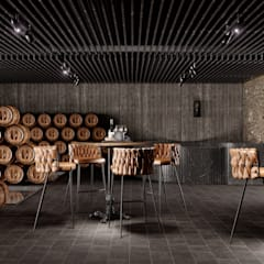 Bars & clubs by HC Arquitecto, Industrial Iron/Steel