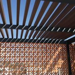 Paseo del Parque Pergola: Terrazas de estilo  por MIDA , Escandinavo
