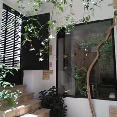 Terrace by Gestionarq, arquitectos en Xàtiva, Rustic Aluminium/Zinc