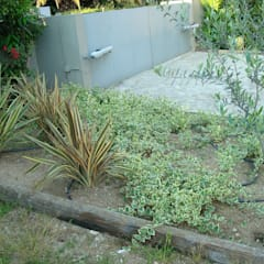 Jardim privado: Jardins  por IDEIA VERDE - arquitectura pasagista, consultoria ambiental & formação profissional, Lda.,Moderno