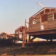كوخ تنفيذ Chalets & Lofts , ريفي خشب نقي  Multicolored