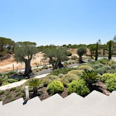 Tropical style gardens by Jardíssimo Tropical
