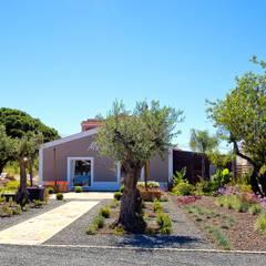 สวน โดย Jardíssimo, โมเดิร์น
