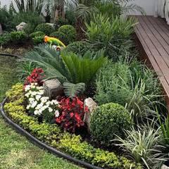 Jardines Modernos Ideas Diseños E Imágenes Homify