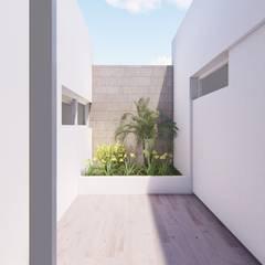 CASA BG Jardines de invierno minimalistas de ARBOL Arquitectos Minimalista