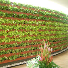 مراكز تسوق/ مولات تنفيذ EcoGreen Ideias Sustentáveis, حداثي سيراميك
