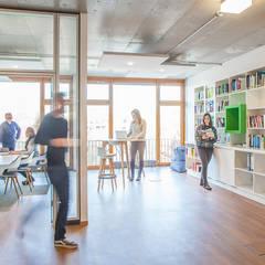 ConTerra Office in Münster:  Bürogebäude von if5-design GmbH,Modern Holz Holznachbildung