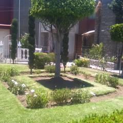 Jardin mantenimiento profesional: Espacios comerciales de estilo  por Jardíneria Robles, Moderno
