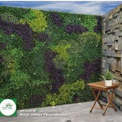 Muro Verde artificial: Paredes de estilo  por Muros Verdes Aguascalientes, Moderno Plástico