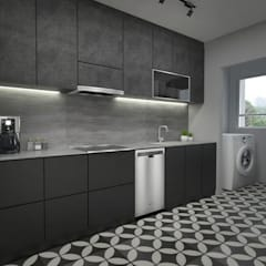 Clementi Ave 1:  Built-in kitchens by Swish Design Works,Industrial Plywood