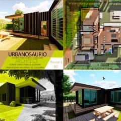 Nhà đồng quê theo Urbanosaurio, Tối giản