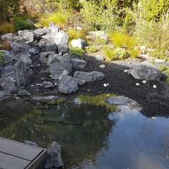 Cascade et bassin: Jardin zen de style  par JARDIN JAPONAIS, Asiatique Pierre