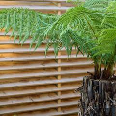 Sanctuary Garden Design in London por Earth Designs Moderno