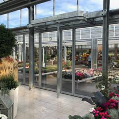 de Schmidinger Wintergärten, Fenster & Verglasungen Moderno Vidrio