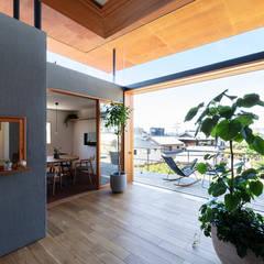 四畳半キューブの家 オリジナルデザインの テラス の HAMADA DESIGN オリジナル