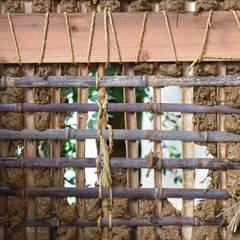 아시아스타일 벽지 & 바닥 by 水野設計室 한옥 대나무 녹색