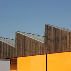 od Colectivo Warehouse Industrialny Drewno O efekcie drewna
