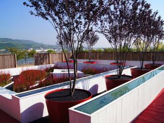Jardin moderne par Planungsbüro STEFAN LAPORT Moderne