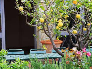 Vườn theo Phillys Interior Design, Địa Trung Hải