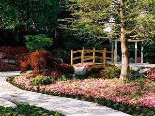 Kirchner Garten & Teich GmbH Modern Garden