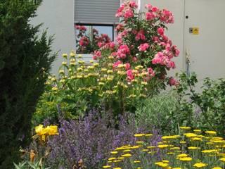 Schönberg. Pflanzdesign Garden