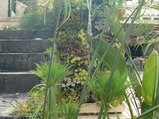 Eclectic style garden by PhytoKinetic S.L. Eclectic