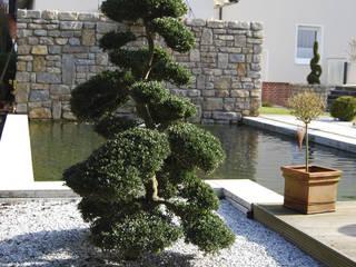 Jardines con piedras de estilo  por Stein/Garten/Design e.K