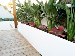 Naturalgreen Jardiners의  발코니, 베란다 & 테라스