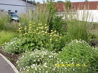 Außenanlage an der Dialysepraxis Bad Königshofen:  Garten von KAISER + KAISER - Visionen für Freiräume GbR