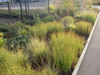 KAISER + KAISER - Visionen für Freiräume GbR Garden
