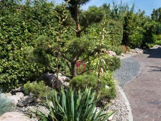 Gartenbonsai von Oswald Gärten Modern