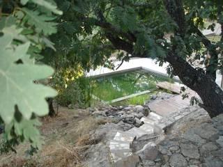 VIVSA. VIVIENDA SANA Jardines de estilo mediterráneo